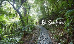 The path to . La Soufrière, which is an active volcano, constantly monitoring and gases from escaping continuously. It will take you about to get to the top and as much to go down. French West Indies, National Days, Active Volcano, West Indian, Sustainable Development, Tropical Paradise, Hiking Trails, Caribbean, Nature