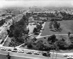 La Brea Tar Pits 1962. La Brea tar pits, containing one of the richest, best preserved, and best studied assemblages of Pleistocene vertebrates, including at least 59 species of mammal and over 135 species of bird. The tar pit fossils bear eloquent witness to life in southern California from 40,000 to 8,000 years ago; aside from vertebrates, they include plants, mollusks, and insects -- over 660 species of organisms in all.