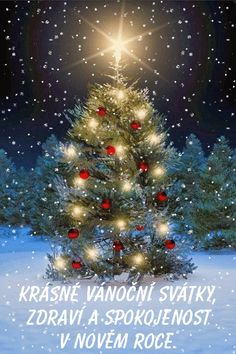 Tree lit up for Christmas (GIF) Merry Christmas Gif, Merry Christmas And Happy New Year, Christmas Images, Christmas Wishes, Christmas Art, Christmas Greetings, Beautiful Christmas, Winter Christmas, Christmas Decorations
