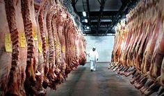 La Unión Europea aprobó la importación de carne fresca del norte argentino   Recuperando lugar en los mercados internacionales  Como lo había adelantado el ministro de Agroindustria de la Nación Ricardo Buryaile tras su encuentro en enero con la máxima autoridad sanitaria de la Unión Europea (UE) Vytenis Andriukaitis la Comisión Europea levantó finalmente la restricción para exportar desde la zona fronteriza con Paraguay y Bolivia carne fresca bovina luego de la solicitud del funcionario de…