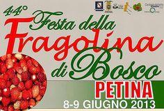Sabato 8 e Domenica 9 Giugno 2013 appuntamento a Petina con la 44^ edizione della Festa della Fragolina di Bosco. Party