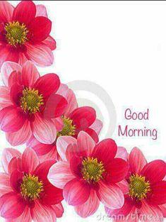 Good Morning greetings Cute Good Morning Images, Good Morning Picture, Good Morning Flowers, Good Morning Good Night, Morning Pictures, Morning Pics, Morning Morning, Good Morning Greeting Cards, Morning Greetings Quotes