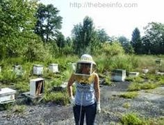 Bee Keepers Suit: 5 Easy Steps To Make A Bee Keepers Suit