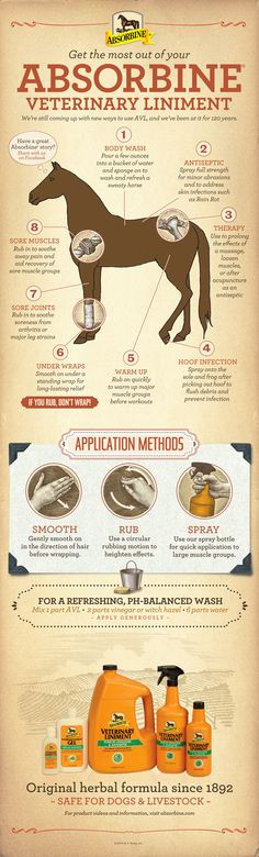 "The Absorbine #Liniment #Infographic! ""More Ways To Use Absorbine® Veterinary Liniment"""