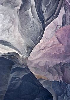 Textural - Natural History - Christophe Piallat - Blues and Purples