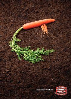 """""""Quand la publicité humanise des objets, des animaux, des légumes…"""" sélectionné par Sylvie Fabien / Directrice artistique - CALGARY FARMER'S MARKET - 2010"""