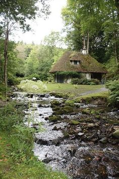 Perfectly quaint cottage hiding away. Streaming water, green fields to lie in the sun