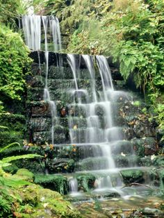 1000 images about hillside decoration ideas on pinterest for Tiered pond waterfall