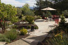 One of the five gardens on the Sept 2016 Bloomin' Backyards Garden Tour and… Garden Crafts, Plants, Plant Sale, Backyard Garden, Master Gardener, Ornamental Plants, Garden Tours, Garden Design, Backyard