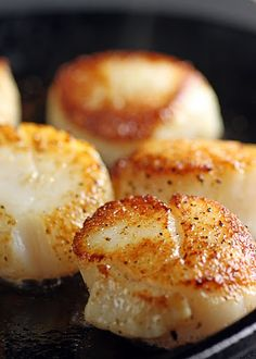Seared Scallops | Recipe | Seared Scallops, Scallops and Scallop ...