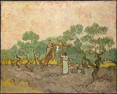 Women Picking Olives Vincent van Gogh (Dutch, Zundert Auvers-sur-Oise) Date: 1889 Medium: Oil on canvas Dimensions: 28 x 36 in. Claude Monet, Vincent Van Gogh, Art Van, Rembrandt, Van Gogh Arte, Theo Van Gogh, Van Gogh Pinturas, Van Gogh Paintings, National Gallery Of Art