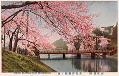 Benkei-bashi Bridge, Akasaka Mitsuke Tokyo, Japan