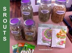 """A pricey foodie splurge for """"living food"""" fans are gourmet sprouts, especially organic sprouts! In California, Whole Foods offers a lot of tasty sprouts including onion, broccoli, fenugree..."""
