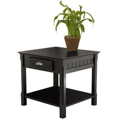 Winsome Wood 20124 Timber End Table with one Drawer and Shelf