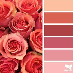 Love these reds and pinks