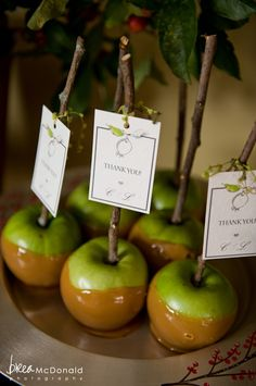 fall wedding ideas wedding-cakes-and-other-deserts candy apples with thank you notes stuck to the branch so cute