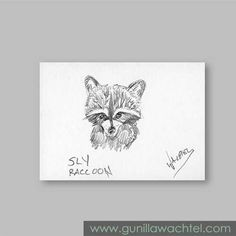 ACEO Raccoon Pencil Sketch
