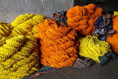 {via Boston Globe  | 05 Feb 2010 } A vendor counts money sitting on a heap of marigold flowers at a wholesale market in Calcutta, India, Friday, Feb. 5, 2010. Marigolds are widely used as strings of garland and for Hindu religious rituals. (AP Photo/Bikas Das) #