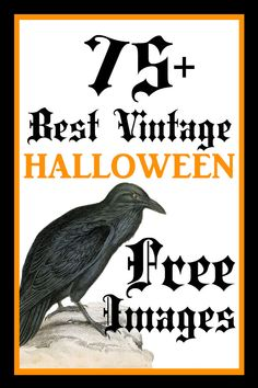Great collection of Images, Printables, Clip Art and Pictures to use in Halloween Crafts and DIY Projects, Handmade Cards and Halloween Party Decorations, Junk Journa Retro Halloween, Halloween Images Free, Vintage Halloween Decorations, Cute Halloween Costumes, Halloween Pictures, Spooky Halloween, Holidays Halloween, Halloween Crafts, Free Halloween Clip Art
