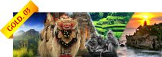 Bali Tour - Gold 3 - Package US$65