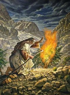 Satan is The Talking Fire Burning Bush. Religious Pictures, Bible Pictures, Jesus Pictures, Religious Art, Lds Art, Bible Art, La Sainte Bible, Burning Bush, Bible Illustrations
