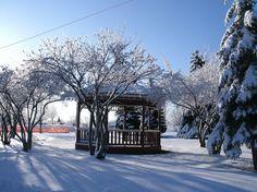 Winter Richmond Mi