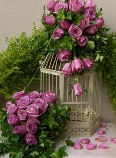 Beautiful...............
