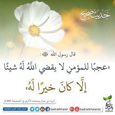 عجبآ للمؤمن Duaa Islam, Allah Islam, Arabic Quotes, Islamic Quotes, Coran Islam, Beauty Salon Decor, Ali Quotes, Quotes From Novels, Peace Be Upon Him