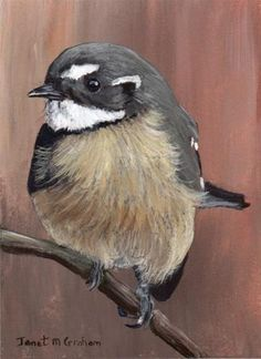 """Daily Paintworks - """"Grey Fantail ACEO"""" by Janet Graham"""