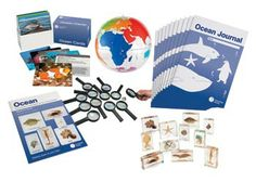 Mini Beast Ocean Class Set - a complete set to learn everything there is to know about the ocean and marine life. With teacher's instruction book and student journals. Perfect for the whole class!