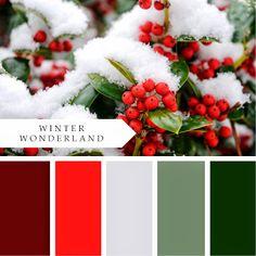PrintableWisdom: Christmas Color Palettes!