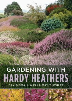The sight of a wild landscape covered with heathers in full bloom is breathtaking, so it is little surprise that people have found ways of introducing these rewarding plants into their gardens. Here t