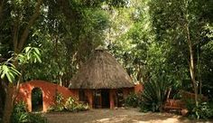 Welcome to Phophonyane - the reception area where there is a small shop and helpful staff. Tanzania, Kenya, Autumn Nature, Guinea Bissau, Nature Reserve, Sierra Leone, Ethiopia, Egypt, Africa