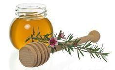 (Zentrum der Gesundheit) – Schlucken Sie noch Pillen? Oder nehmen Sie schon Manuka-Honig? Ein Blick auf die Eigenschaften des Manuka-Honigs zeigt, warum der aromatische Honig ein so erfolgreiches Elixier bei vielerlei Gesundheitsproblemen sein kann. Manuka-Honig wirkt gegen Bakterien, gegen Viren und gegen Pilze. Manuka-Honig wirkt ausserdem antiseptisch, antioxidativ und wundheilend. Manuka-Honig kann – trotz seiner Süsse – sogar Karies bekämpfen. Doch auch bei Manuka-Honig gilt: ...