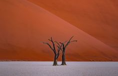 Identical Twins - Nothing like deadvlei in terms of elements & lights. a magnificent place that helps you to master your composition. Captured with ZEISS  Milvus 135mm