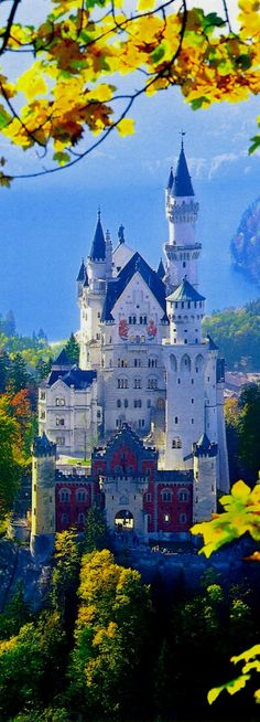 Neuschwanstein Castle, Germany, in summer Beautiful Castles, Beautiful Places, Places Around The World, Around The Worlds, Places To Travel, Places To Visit, Castle House, New Castle, Germany Castles