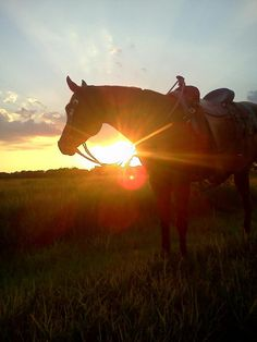 Watching the sun come up or go down from the back of a horse
