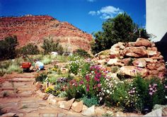 Hillside rock garden