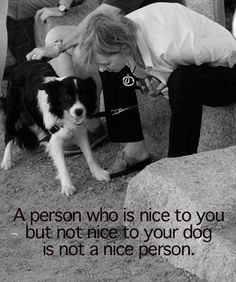 How very true it is... and I also don't really trust people who don't like dogs either... gotta be honest... :)