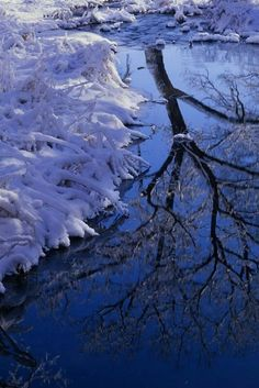 winter reflection...