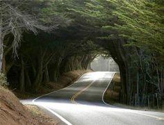 welke weg volg jij?