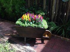 Projeto para um c  arrinho de flores: Jardins rústicos por Casa Nova Paisagismo