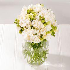 Fragrant White Freesia