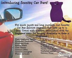 New Scentsy car bar and scents