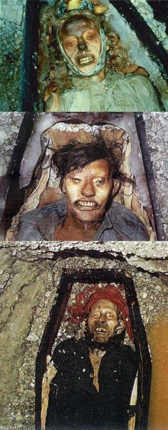 The preserved bodies of three crewman from the ill-fated Franklin Expedition were exhumed from the permafrost of Beechey Island in 1984 to determine cause of death. Autopsy and toxicology analysis of John Torrington, John Hartnell and William Braine showed evidence of lead poisoning, which is believed to have come from cans the food was stored in on board their ships. http://www.cultofweird.com #cannibalism