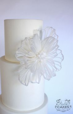 FREE Wafer Paper Filigree Flower Lesson www. Wafer Paper Flowers, Wafer Paper Cake, Gum Paste Flowers, Fondant Flowers, Sugar Flowers, Cake Decorating Techniques, Cake Decorating Tutorials, Decorating Ideas, Cookie Tutorials
