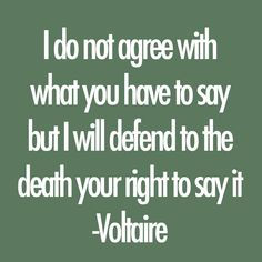 Voltaire writes a powerful quote by advocating people's right to freedom of speech, even if it means the person making a statement finds disagreement among his audience. What I find so compelling of this quote is Voltaire saying that people will sacrifice their lives defend a person's right to express his or her opinion. You Smile, Mantra, Voltaire Quotes, Opinion Quotes, Daily Positive Affirmations, Quotes About Everything, Quote Citation, Political Quotes, Father Quotes