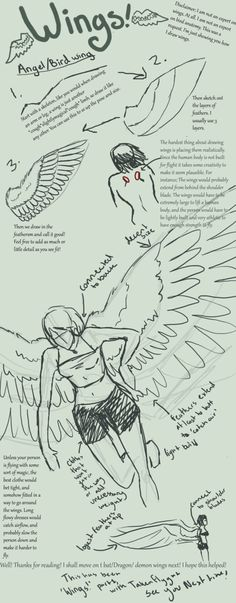My first tutorial! How I draw wings. It was a request. This is part one! Sorry for the crappiness of the sketches, I stuck this together in about half an hour! It's not the best, but hey, I tried. ...