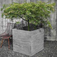 Chenes Brut Garden Box Planter