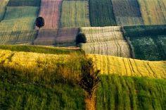 Poland favorite-places-spaces